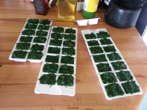 Wild Garlic ice cubes